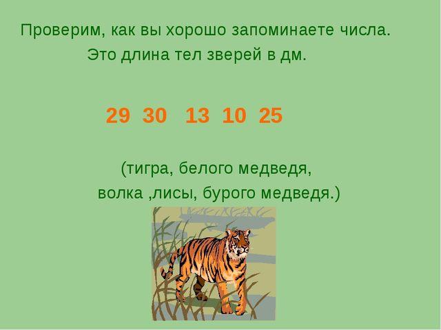 Проверим, как вы хорошо запоминаете числа. Это длина тел зверей в дм. 29 30 1...