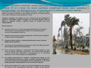 Ураган – это ветер разрушительной силы и значительной продолжительности. Ураг
