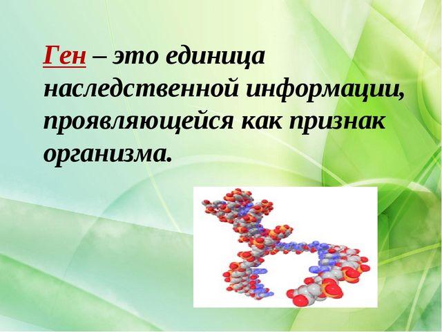 Ген – это единица наследственной информации, проявляющейся как признак орган...