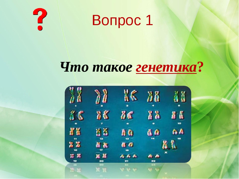 Что такое генетика? Вопрос 1