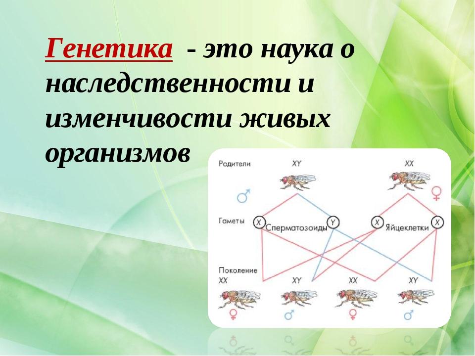 Генетика - это наука о наследственности и изменчивости живых организмов
