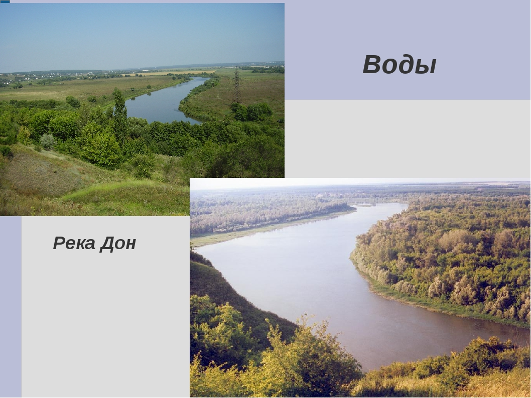 Воды Река Дон