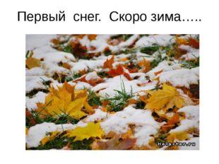 Первый снег. Скоро зима…..