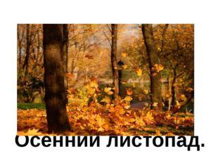 Осенний листопад.