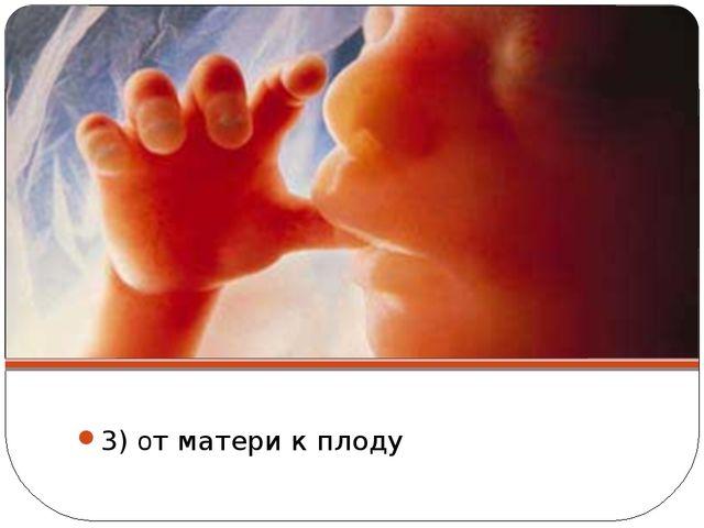 3) от матери к плоду