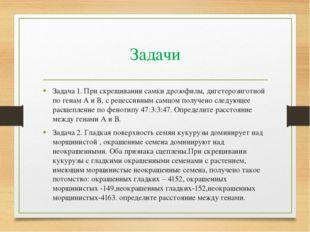 Задачи Задача 1. При скрещивании самки дрозофилы, дигетерозиготной по генам А