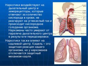 Наркотики воздействуют на дыхательный центр и хеморецепторы, которые отвечают