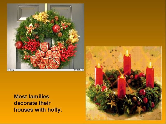 Most families decorate their houses with holly.