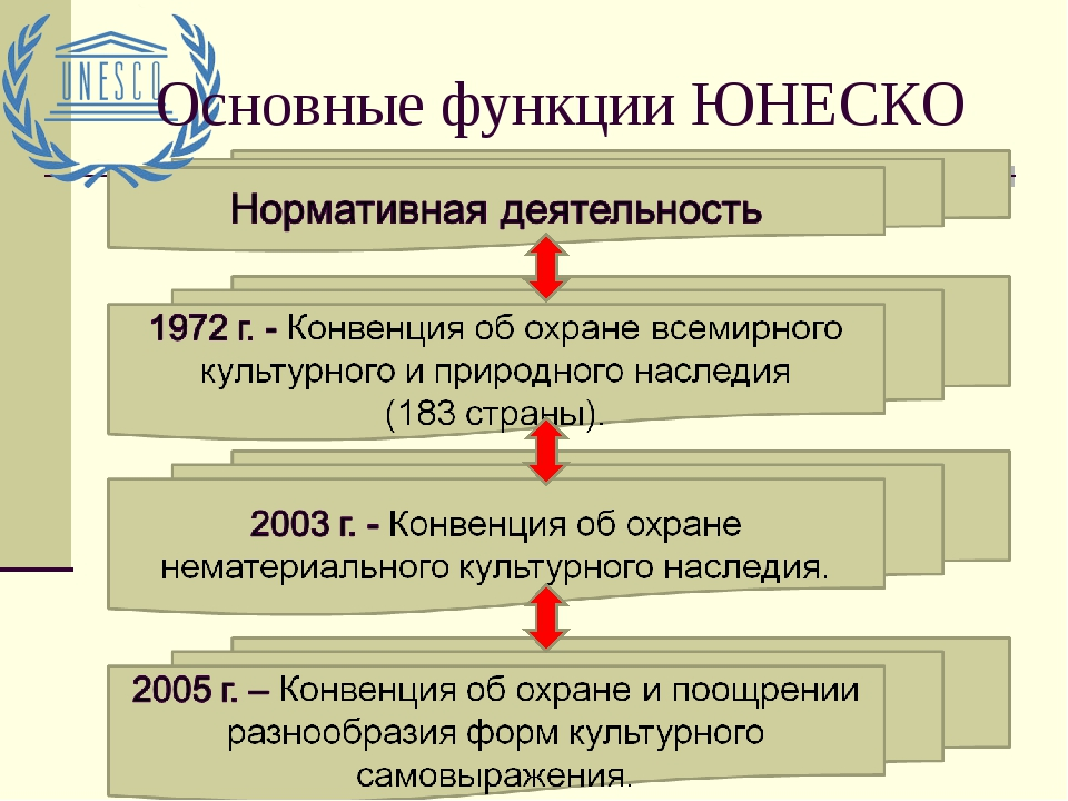 Основные функции ЮНЕСКО