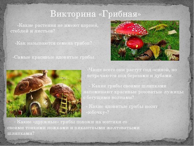 Викторина «Грибная» -Какие растения не имеют корней, стеблей и листьев? -Как...