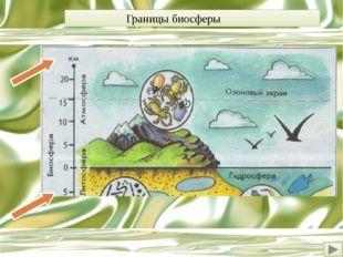 В 20е годы ХХ века выдающийся русский ученый академик Владимир Иванович Верна
