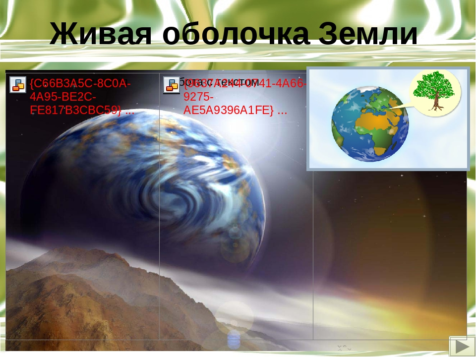 Тема урока. §25.Живая оболочка Земли Цель урока Сформировать понятие «биосфер...
