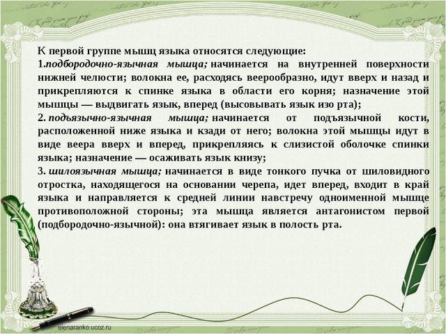 К первой группе мышц языка относятся следующие: 1.подбородочно-язычная мышца;...