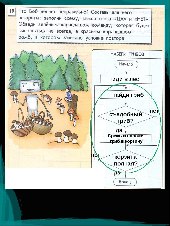 иди в лес найди гриб съедобный гриб? да нет Срежь и положи гриб в корзину кор...
