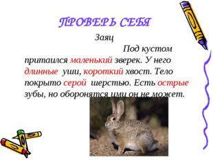 ПРОВЕРЬ СЕБЯ Заяц Под кустом притаился маленький зверек. У него длинные уши,