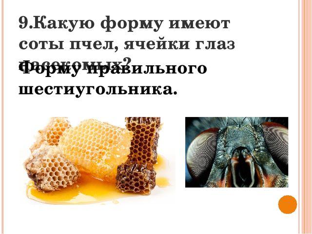 9.Какую форму имеют соты пчел, ячейки глаз насекомых? Форму правильного шести...
