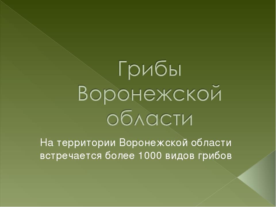 На территории Воронежской области встречается более 1000 видов грибов