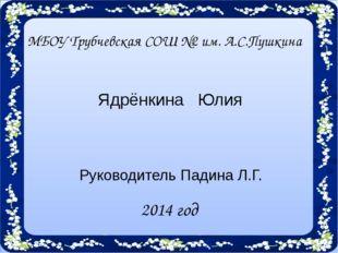 2014 год Ядрёнкина Юлия МБОУ Трубчевская СОШ №2 им. А.С.Пушкина Руководитель