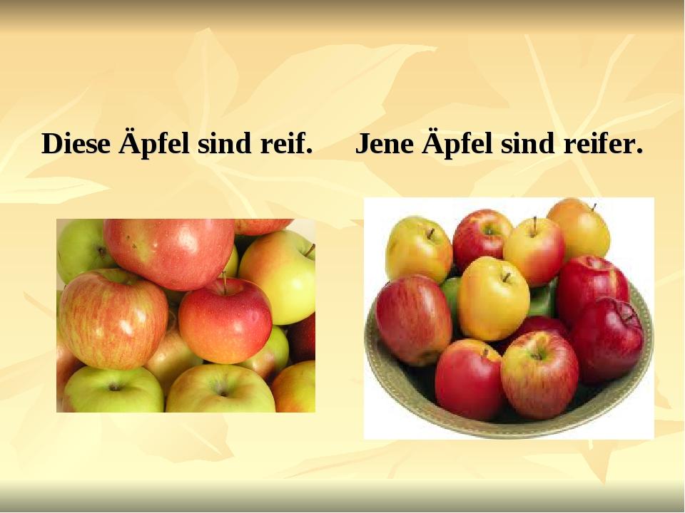 Diese Äpfel sind reif. Jene Äpfel sind reifer.