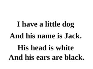I have a little dog And his name is Jack. His head is white And his ears are