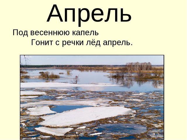 Апрель Под весеннюю капель Гонит с речки лёд апрель.