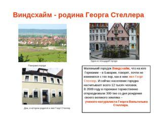 Виндсхайм - родина Георга Стеллера Панорама города Одна из площадей города До
