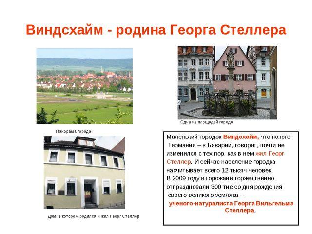 Виндсхайм - родина Георга Стеллера Панорама города Одна из площадей города До...