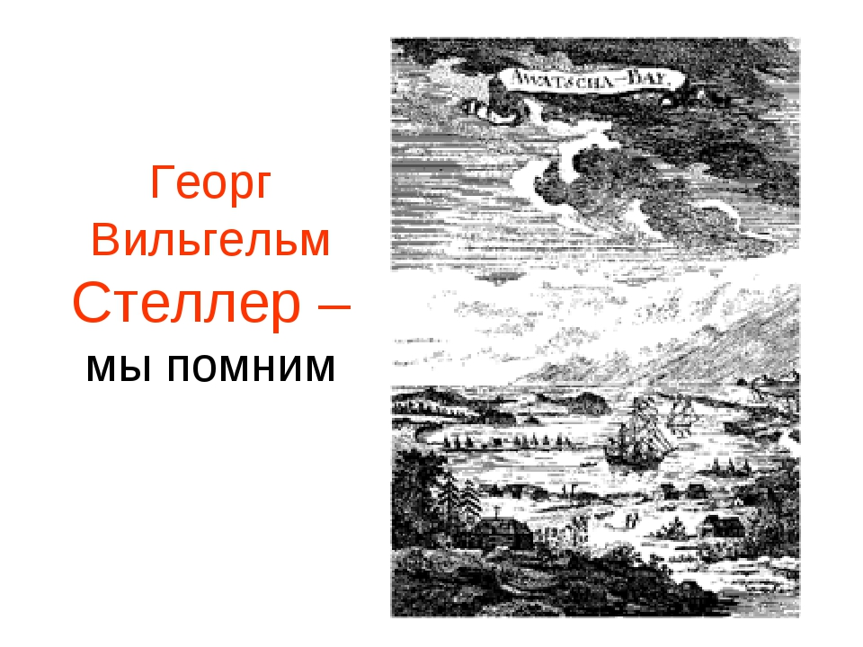 Георг Вильгельм Стеллер – мы помним