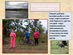 Откуда пошло название озера Половка? Раньше рыбаки, наловив рыбы в этом озере