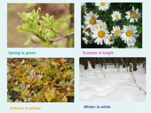 Spring is green Summer is bright Autumn is yellow Winter is white