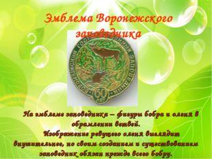 На эмблеме заповедника – фигуры бобра и оленя в обрамлении ветвей. Изображен
