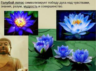 Голубой лотос символизирует победу духа над чувствами, знания, разум,мудрост