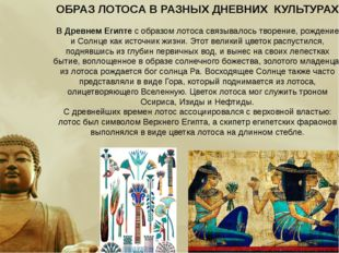 ОБРАЗ ЛОТОСА В РАЗНЫХ ДНЕВНИХ КУЛЬТУРАХ ВДревнем Египтесобразом лотоса свя