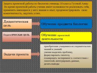Защита проектной работы по биологии ученицы 10 класса Гусевой Анны Во время п