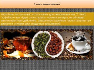 """Кофейные листья можно использовать для заваривания чая. У такого """"кофейного ч"""