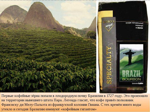 Первые кофейные зёрна попали в плодородную почву Бразилии в 1727 году. Это пр...