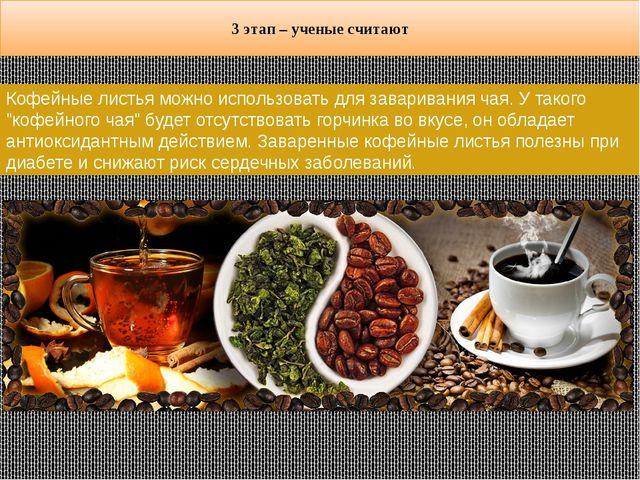"""Кофейные листья можно использовать для заваривания чая. У такого """"кофейного ч..."""