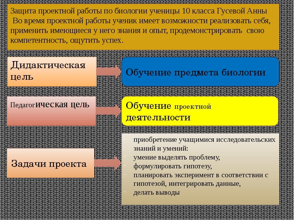 Защита проектной работы по биологии ученицы 10 класса Гусевой Анны Во время п...