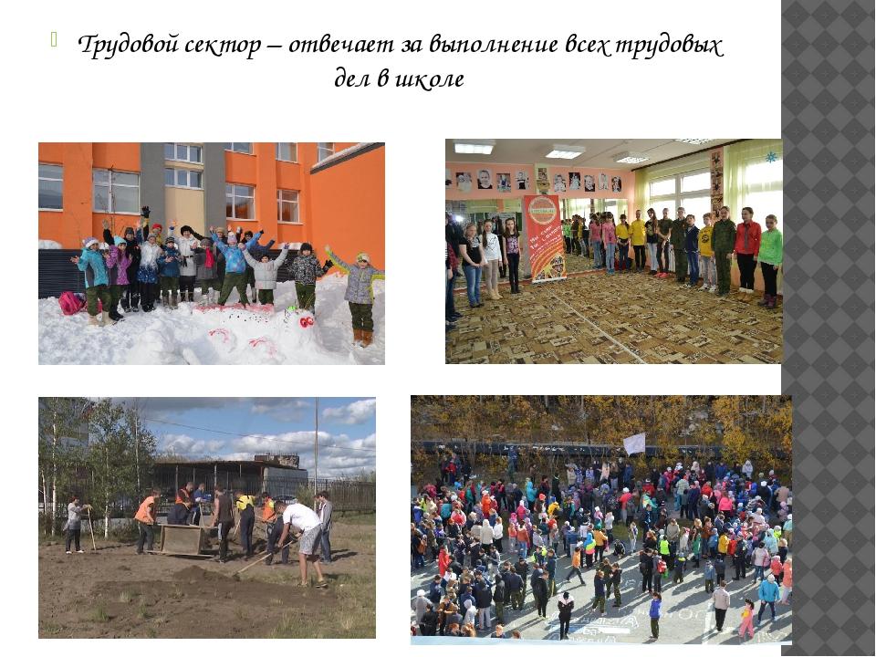 Трудовой сектор – отвечает за выполнение всех трудовых дел в школе