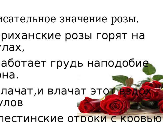 Описательное значение розы. Шериханские розы горят на скулах, И работает груд...