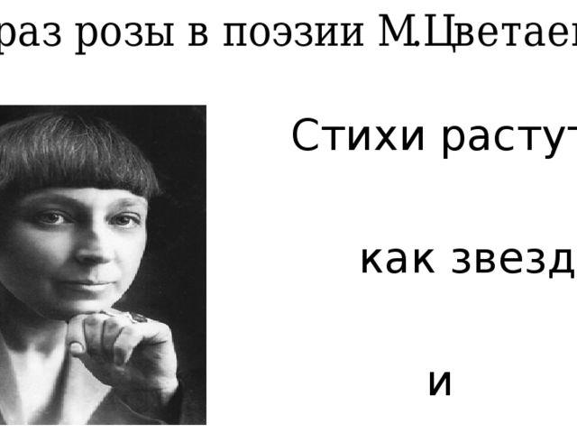 Образ розы в поэзии М.Цветаевой Стихи растут, как звезды и как розы.
