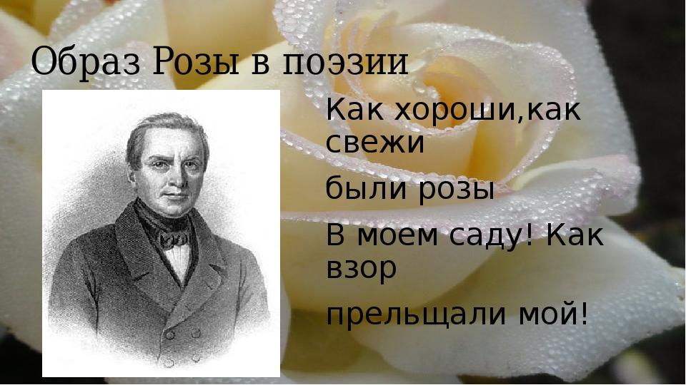 Образ Розы в поэзии Как хороши,как свежи были розы В моем саду! Как взор прел...