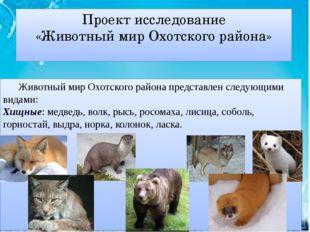 Проект исследование «Животный мир Охотского района» Животный мир Охотского р