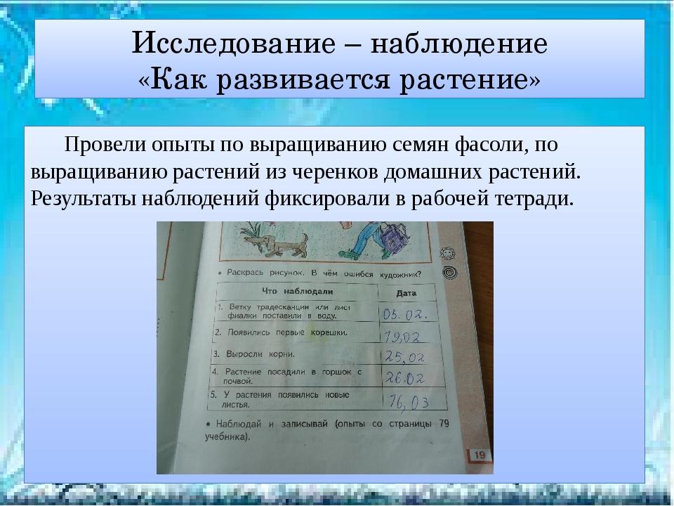 Исследование – наблюдение «Как развивается растение» Провели опыты по выращи...