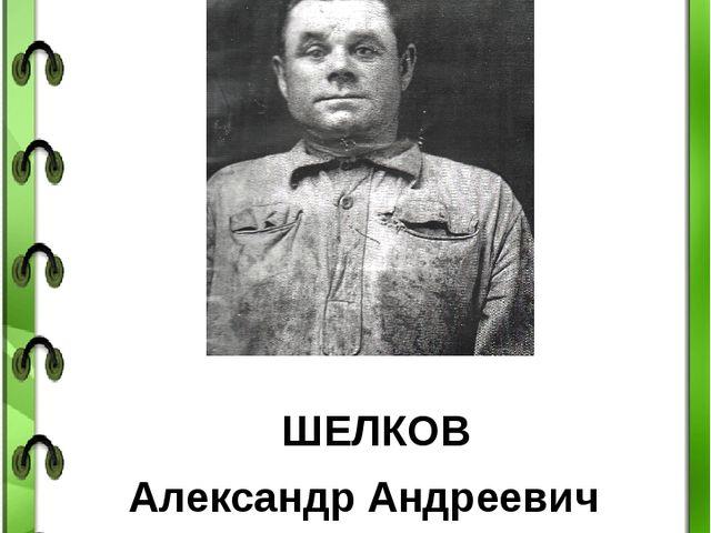 НАШИ ПРАДЕДЫ ШЕЛКОВ Александр Андреевич Прадед Фефеловой Елизаветы