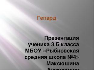Гепард Презентация ученика 3 Б класса МБОУ «Рыбновская средняя школа №4» Макс