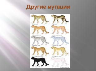 Другие мутации