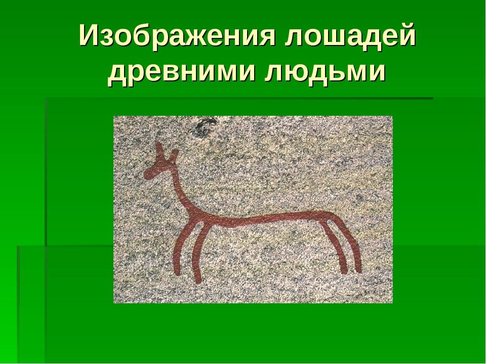 Изображения лошадей древними людьми