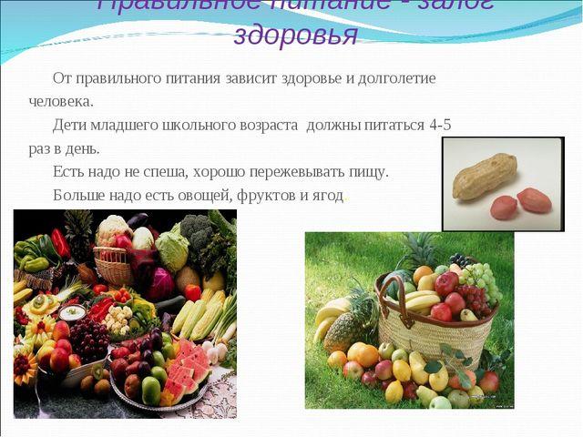 Правильное питание - залог здоровья От правильного питания зависит здоровье и...