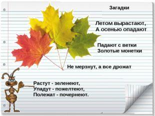 Загадки Летом вырастают, А осенью опадают. Падают с ветки Золотые монетки. Ра